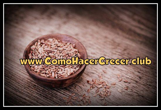 semillas de lino para hacer crecer el busto